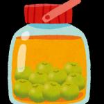 梅酒の作り方は難しくありません!気管支炎に、ダイエットにも!?