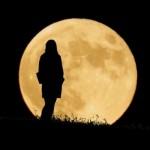 新月の願い事ノートへの書き方は?何故願いが叶うの?
